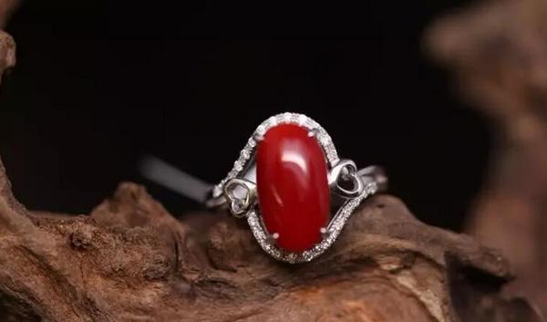 阿卡红珊瑚牛血红戒指