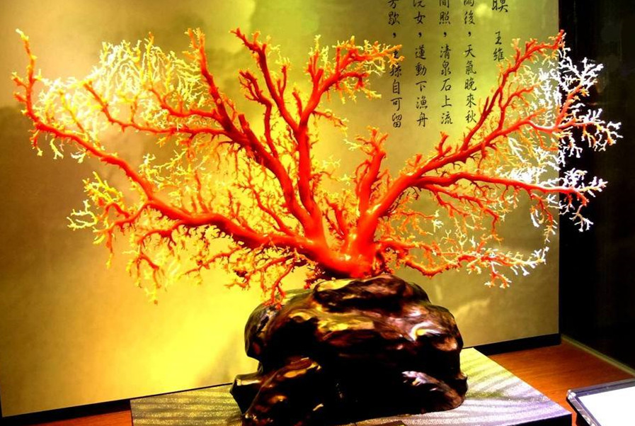 红珊瑚摆件