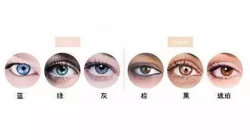 眼睛颜色对照图